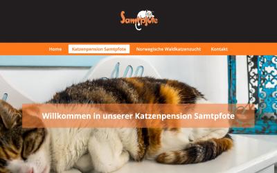 Katzenpension Samtpfote wird zum 31.12.2020 geschlossen