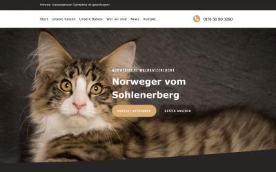 Unsere Website im neuen Glanz